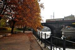 用在秋天时间的电车轨道网络观看庭院风景  免版税图库摄影