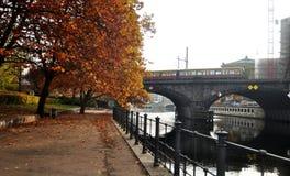 用在秋天时间的电车轨道网络观看庭院风景  库存照片