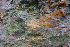 用地衣盖的橙色和黑石头 免版税图库摄影