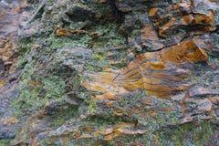 用地衣盖的灰色和橙色石头 免版税库存图片