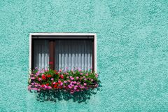 用垂悬在房子的蓝绿色门面的桃红色和红色喇叭花装饰的葡萄酒传统玻璃窗 免版税库存照片