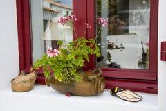 用大竺葵装饰的窗口在普罗旺斯法国开花 免版税库存图片