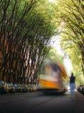用尽往的Unidentifable人在一条沿途有树的道路的迷离电车在街道上 图库摄影