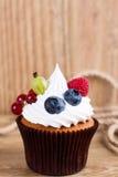 用巧克力奶油和夏天误码率装饰的巧克力杯形蛋糕 免版税库存图片