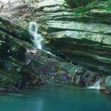 用常春藤和青苔报道的倾斜与流动一点瀑布 库存图片