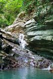 用常春藤和青苔报道的树木丛生的倾斜与流动一点瀑布 库存照片