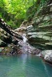 用常春藤和青苔盖的树木丛生的岩石与流动一点瀑布 库存图片