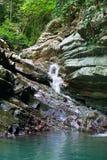 用常春藤和青苔盖的树木丛生的峭壁与流动一点瀑布 库存照片