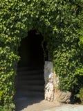 用常春藤盖的墙壁,与里面输入 免版税库存照片