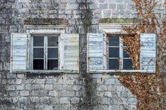 用常春藤盖的老窗口 免版税图库摄影