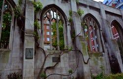 用常春藤/修道院的盖的高哥特式窗口被破坏的教会 库存图片