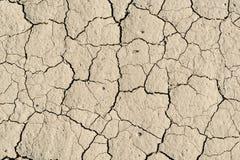 用干燥地球做的背景 免版税图库摄影
