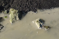 用当前泥泞的水发了恶臭 免版税图库摄影