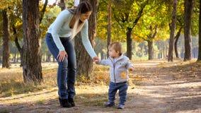 用手拿着她的儿子的年轻微笑的母亲,当走在秋天公园时 免版税库存图片