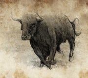 用数字式片剂做的草图,公牛运行中 库存图片