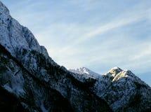 用新鲜的雪报道的阿尔卑斯峰顶 免版税图库摄影