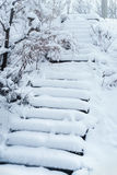 用新鲜的雪盖的老台阶 图库摄影
