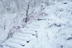 用新鲜的雪盖的老staris 免版税库存图片