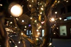 用明亮的闪耀的光装饰的街道 免版税库存图片