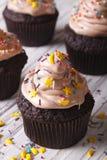 用星和月亮垂直装饰的巧克力杯形蛋糕 库存照片