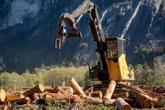 用木材建造后勤学工业机器移动的日志晴天 免版税库存图片