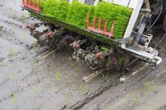 用机器制造种植米 免版税库存图片