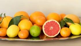 用柑橘水果的不同的类型的金属盘 免版税库存照片