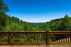 用栏杆围俯视的谷 库存图片