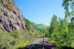 用栏杆围铁路睡眠者 老铁路通过森林 免版税库存照片