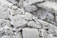 用树冰盖的石头 库存图片