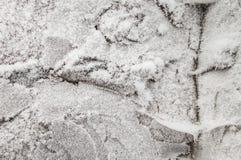 用树冰盖的石头 图库摄影