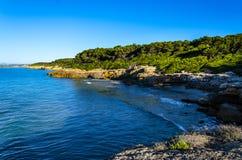 用树盖的岩石地中海海岸在塔拉贡纳,西班牙附近 免版税库存照片