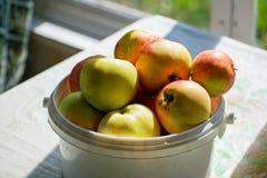 用桶提用在桌,农厂生活上的成熟苹果 食物 收获 桶用苹果在庭院里 图库摄影