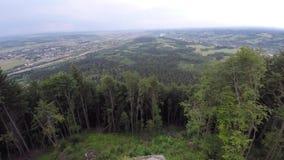 用森林山风景盖的山土坎 寄生虫录影 免版税库存照片