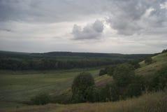 用森林盖的一个多小山谷的早晨视图在多云天空下 免版税库存照片