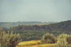 用森林盖的一个多小山谷的早晨视图在多云天空下 免版税图库摄影