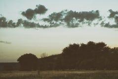 用森林盖的一个多小山谷的早晨视图在多云天空下 免版税库存图片
