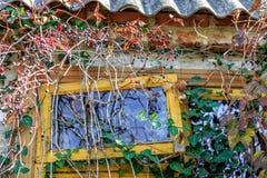 用植物报道的村庄外部 晴朗的秋天乡下背景 有一点开放的窗口 免版税库存图片