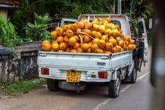 用橙色椰子装载的白色卡车停放在路 库存照片
