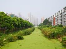 用水厂被盖的河 免版税库存图片