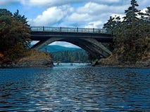 用浆划桥梁的峡谷下 免版税库存图片