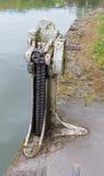 用浆划锁齿轮在肯尼特和Avon运河的 库存图片