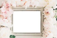 用牡丹装饰的淡色木制框架开花,文本的空间 嘲笑 图库摄影