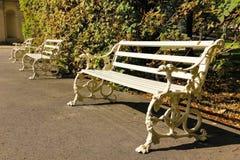 用狗头装饰的空白长凳。 Wilanow公园。 波兰 免版税库存图片