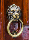 用狮子头装饰的老木门 免版税库存图片