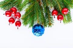 用球装饰的绿色云杉的分支,在白色背景的莓果 新年` s,圣诞节装饰 欢乐主题 免版税库存照片