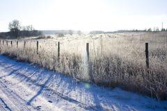 用白色锡报道的美好的圣诞节冬天风景领域 免版税库存图片