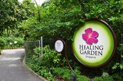 医治用的庭院在新加坡植物园里 图库摄影