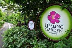 医治用的庭院在新加坡植物园里 库存图片
