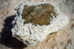 用盐湖的盐盖的石头 库存图片